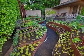 Small Backyard Vegetable Garden Ideas Backyard Vegetable Garden Design Best Idea Garden