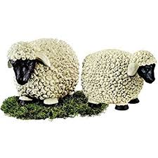 design toscano merino ewe size up sheep