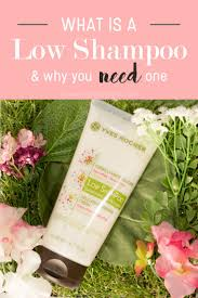 Dandruff And Hair Loss Best 10 What Is Dandruff Ideas On Pinterest Tea Tree Oil Hair