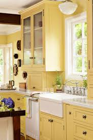 Yellow Cabinets Kitchen 23 Best Colorful Kitchens Images On Pinterest Colorful Kitchens