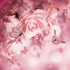 beautiful roses and butterflies stock photo seqoya 107901142