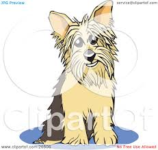 clipart illustration of a yorkshire terrier dog sitting on a blue