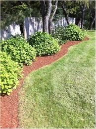 Backyard Landscaping Tips by Backyards Mesmerizing Images Of Backyard Landscaping Backyard