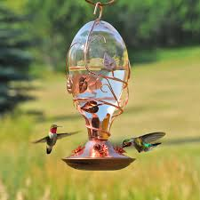 Glass Globes For Garden Amazon Com Birdscapes Looking Glass Hummingbird Feeder Wild
