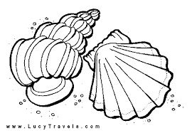 sea shell free coloring pages art coloring pages