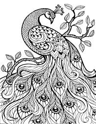 detailed coloring pages of animals archives mente beta most