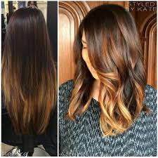 ecaille hair trends for 2015 new hair trend ecaille tortoise shell hair color technique
