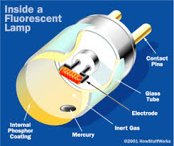 Where Is The Starter In A Fluorescent Light Fixture How Fluorescent Ls Work Fluorescent L Bulbs And Lights