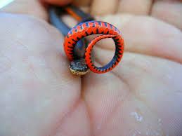 Mississippi wild animals images Mississippi ring neck snake 2 by noel13 jpg