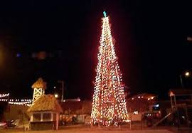 how many christmas lights per foot of tree christmas lights adorn san pedro san pedro sun belize news