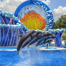 Sea World Orlando Map by Check Out Sam Travel Guide And Info About Orlando Usa