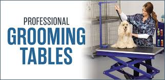 Dog Grooming Table For Sale Petedge Com Wholesale Pet Supplies Dog Grooming Petedge Com