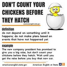 Count Your Chickens Before They Hatch Meaning Learning Idioms By A Sentence Beyond Words