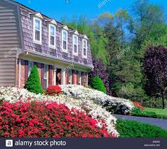 flowering red and white azaleas in front of red brick two story