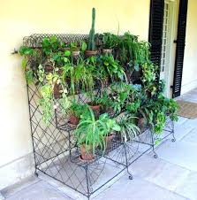 tall plant stands decorative and functional tool for indoor and