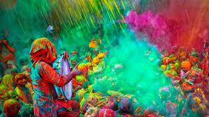 herbal gulal powder organic holi colours holi gulal online