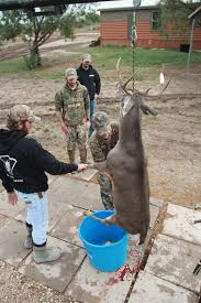 this side up what u0027s the best way to hang a deer outdoor life