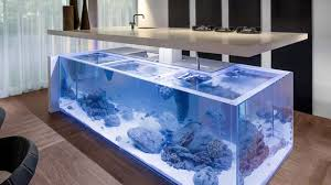 wohnideen minimalistischen aquarium minimalistische kücheninsel integriertes aquarium mit algen