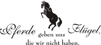 pferde spr che spruch pferde geben uns flügel die wir nicht haben mit