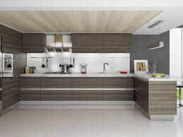 Kitchen Contemporary Cabinets Kitchen Modern Light Wood Normabudden Com