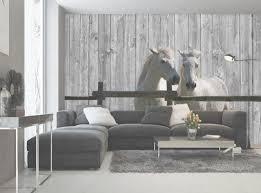 papier peint chevaux pour chambre papier peint chevaux pour chambre indogate com decoration