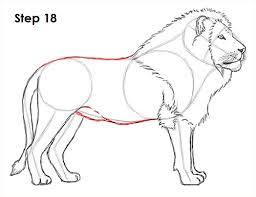 draw lion