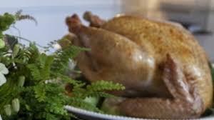 fresh turkey buying guide edible rhody