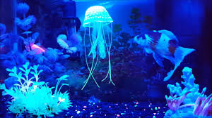 Jellyfish Home Decor by Aquarium Decor Small Jellyfish Ornament 2 Pack Youtube