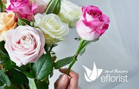 same day flowers same day flower delivery waitrose florist