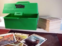 wildlife treasury best of the 80s