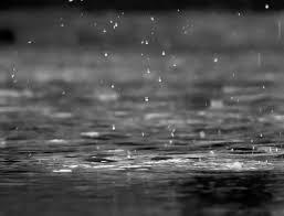 rain and floods weather wiz kids