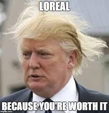Hair Meme - because you re worth it funny donald trump meme