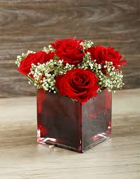 Vases Of Roses Buy Red Roses And Million Star In Vase Colour Netflorist