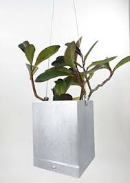 Modern Hanging Planters Raku Modern Succulent Planter Contemporary Cactus Planter Pot Grey