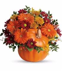 12 best thanksgiving fall images on florists
