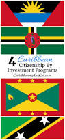 Flag Of The Bahamas 4 Caribbean Citizenship By Investment Programs Caribbean U0026 Co