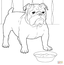 bulldog coloring pages 3407 600 575 free printable coloring pages