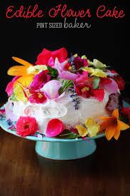 organic edible flowers edible organic flowers cake pint sized baker