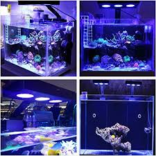 led aquarium lights for reef tanks hipargero touch control 30w cree nano led aquarium light for coral