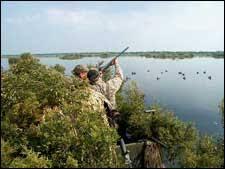 Mallards Duck Blind Discover The Outdoors Hunting Turkey Deer Duck Elk State Regulations