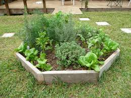 Herb Garden Layout by Man In Overalls Amidst The Construction