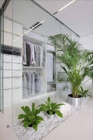 interior chic white cube of apartment interior plant design