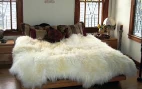 Sheepskin Area Rugs Sale Home Decor Amusing Fur Area Rugs Combine With Faux Rugs Throw