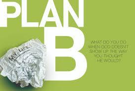plan b plan b a book by pete wilson