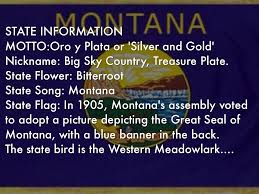 Montana Flag Montana By Britney Joines