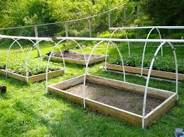Pvc Raised Garden Bed - inch pvc pipe featherly farm