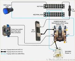fantastic 8 pin dpdt relay wiring diagram pictures inspiration