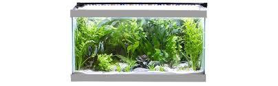 30 led aquarium light amazon com finnex stingray aquarium led light 30 inch pet supplies