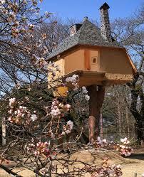 Tree Houses Around The World 25 Creative Tree House Plans Around The World