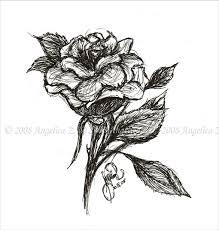 27 rose drawing free u0026 premium templates